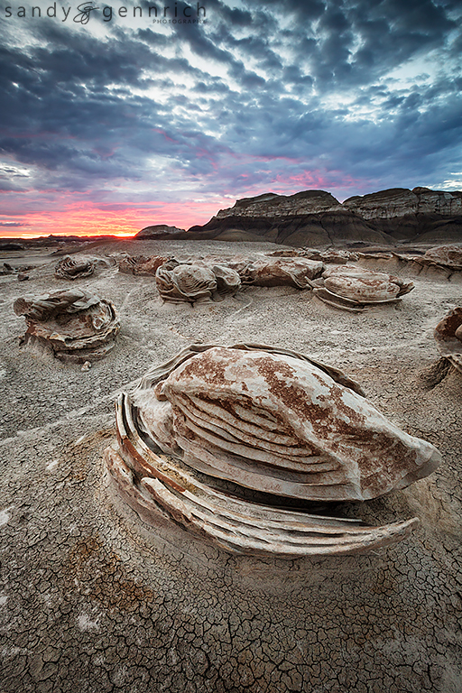 Sea Turtle - Bisti Badlands - Farmington, NM